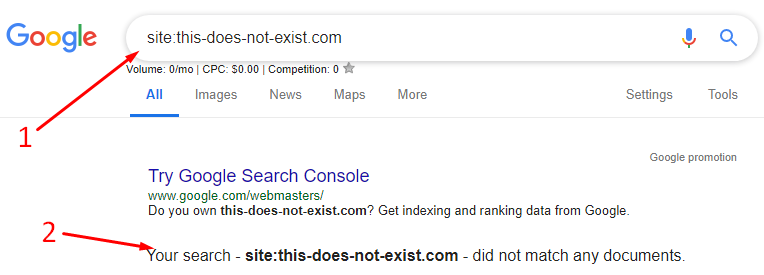 Site search for noindexed site