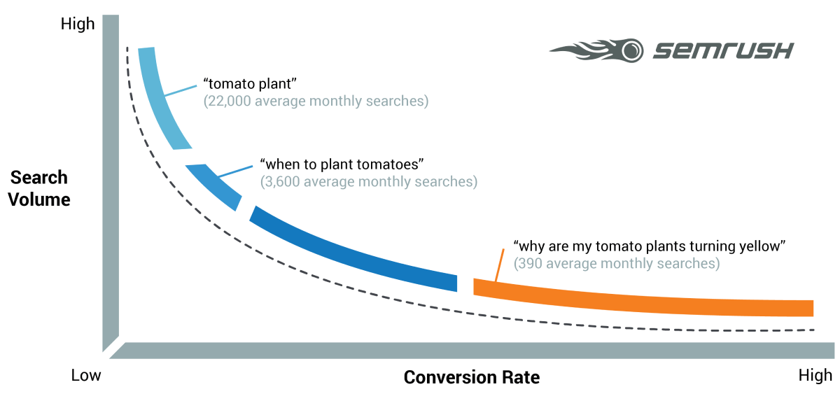 Short vs long-tail keywords